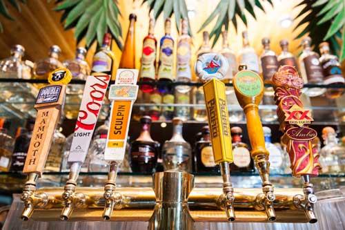 robertos_beer_taps